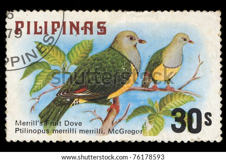 PHILIPPINES - CIRCA 1979: A stamp printed in Philippines shows Merrillâ??s Fruit Dove, circa 1979