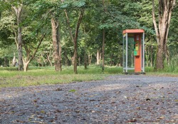 Phone booth in the wood