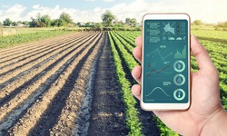 Phone with infographics on the background of a farm field plantation. Process of crop maturation, moisture and soil nutrition. Innovative technologies in the agroindustry and food production.