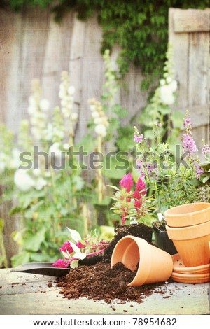 Photo based textured image of a rustic table with terracotta pots, potting soil, trowel and flowers in front of an old weathered gardening shed.