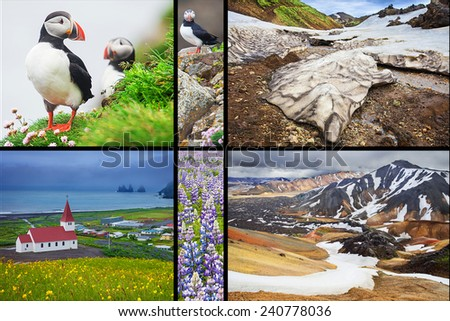 Photo collage from Iceland. Collage includes major natural landmarks like the Puffins on wesfjords, Landmannalaugar mountains and Vik