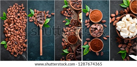Photo collage of cocoa beans, cocoa powder, chocolate, cocoa butter. Top view.