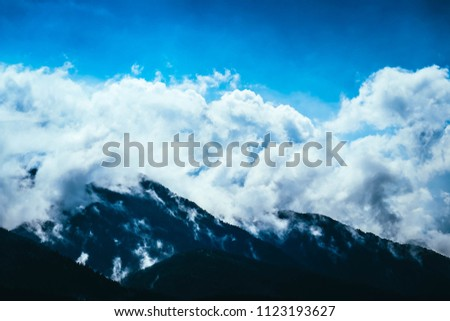 Photo depicting beautiful a foggy mystic mountains. Fog clouds at the pine tree mystical woods, morning. Europe, mysterious alps landscape. #1123193627