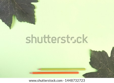 Photo flat layout layout. Color pencils and leaves on a green background. View from above. #1448732723