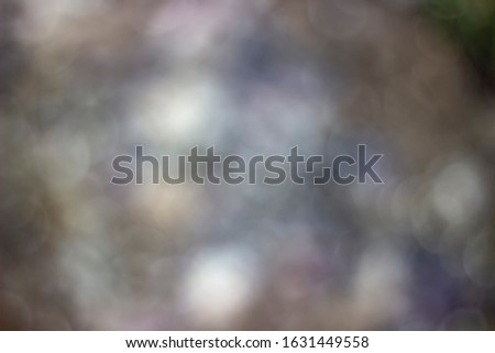 Photo in bokeh style. The photo shows gray-brown leaves and stones. white stones with a blurred silhouette are also visible.