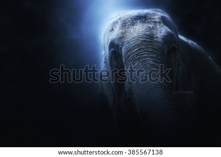Photo manipulation of an elephant