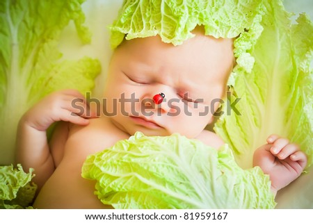Photo of a baby lying on the cabbage