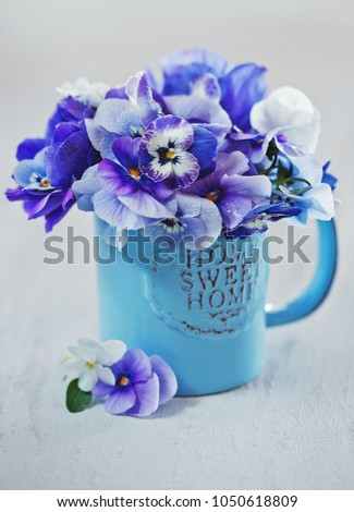 Stock Photo Photo of a beautiful purple pansy flowers close-up in a blue mug on a light background. Beautiful and delicate flowers.