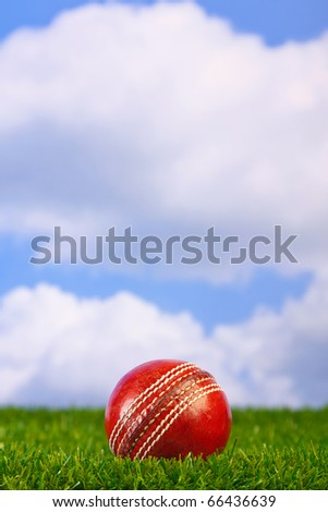 Photo of a cricket ball on grass with sky background.