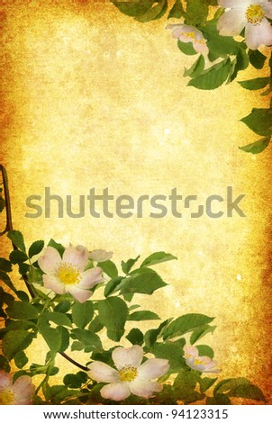 Photo of a flowers pasted on a grunge background