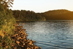 Photo of a lake and trees at sunset. The nature of Russia. Stones along the river bank