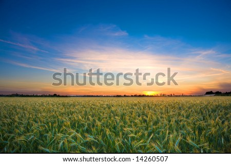 Photo of a landscape with a brilliantly detailed foreground and a golden sunset sky.