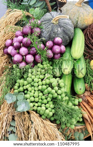 Photo of a large group of  vegetables of Thailand