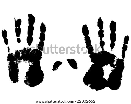 Photo of a left and right hand on a white background.