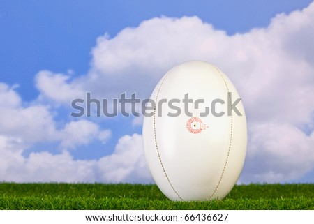 Photo of a rugby ball tee'd up on grass with sky background. #66436627
