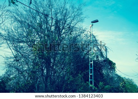 Photo of a street lamp in the daylight on a cold winder day. #1384123403