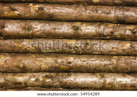 Photo of a wall of the house made of wooden logs - stock photo
