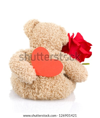 Photo of beautiful soft toy isolated on white background, back side of teddy bear holding red fresh rose and heart-shaped postcard, Valentine day, romantic present, 14 of february, love concept