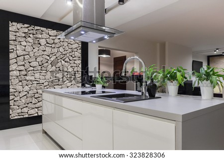Photo of beautiful white kitchen island with decorative wall