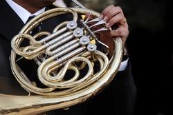 photo of brass wind instruments
