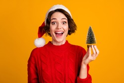 Photo of cheerful funny lady celebrate winter holidays hold little decor fir tree christmas atmosphere good overjoyed mood wear santa cap red knitted sweater isolated yellow color background