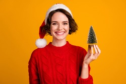 Photo of cheerful funny lady celebrate winter holidays hold little decor fir tree christmas atmosphere sell souvenirs wear santa cap red knitted sweater isolated yellow color background