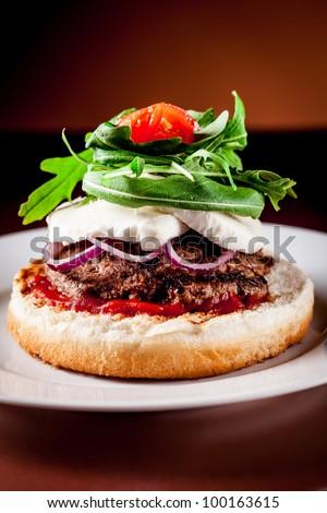 photo of delicious italian hamburger style with arugula and mozzarella