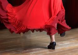 Photo of flamenco dancer. Legs fragment photo of spanish flamenco dancer.  Only legs cropped