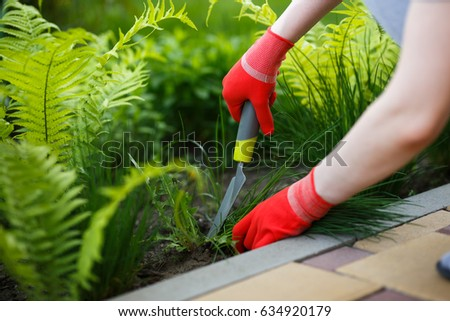 Photo of gloved woman hand holding weed and tool removing it from soil. #634920179