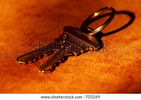 Photo of House Keys