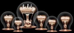 Photo of light bulb group with shining fibers in ABILITY, SKILL, TRAIN, TALENT, LEARN and EDUCATION shape isolated on black background