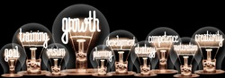 Photo of light bulbs group with shining fibers in a shape of Growth, Teamwork, Leadership, Career and Strategy concept related words isolated on black background