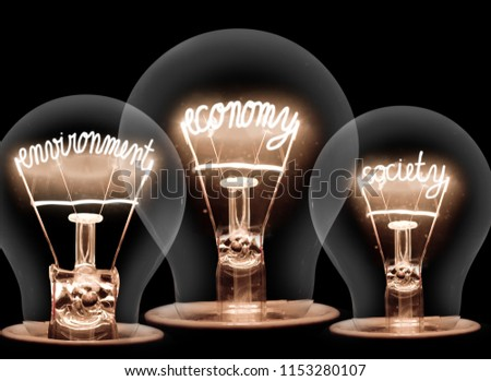 Photo of light bulbs with shining fibres in ECONOMY, ENVIRONMENT and SOCIETY shape on black background; concept of SUSTAINABILITY