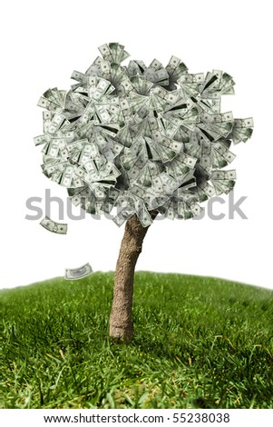 photo of money tree made of dollars