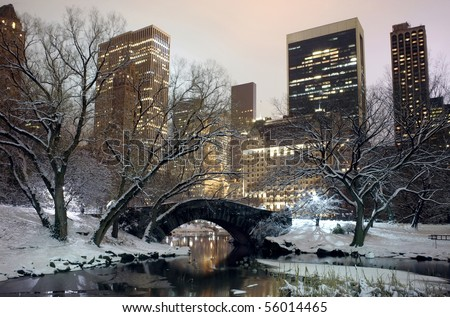 Photo of New York City buildings as viewed from Central Park at night.  Taken December 19, 2008 in the USA.