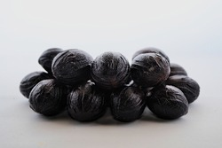 photo of nutmeg shell gray background