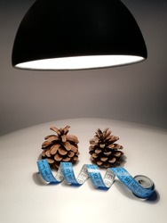 Photo of pine brown cones with a blue millimeter under the sight of rays from a lamp on a white background