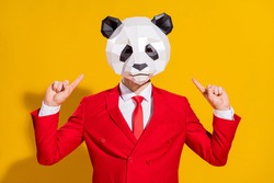 Photo of promoter freak guy indicate finger head wear panda mask red suit isolated on yellow color background