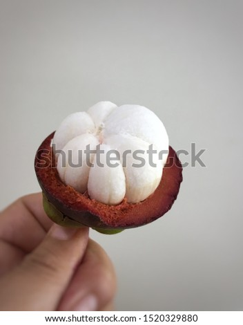 "Photo of ""Queen"" of Thai fruit name Mangosteen. This fruit has white insider of the cover of red purple with green cork."