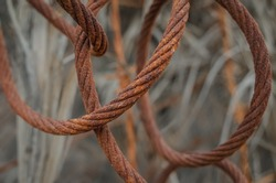 Photo of rusted barbed wire