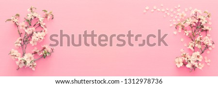 photo of spring white cherry blossom tree on pastel pink wooden background. View from above, flat lay #1312978736