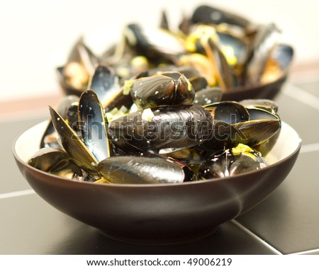photo of steamed mussels in a sherry leek and cream sauce, delicious! - stock photo