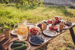 Photo of summer picnic table concept homegrown fruits berries vegetables loaf bread lemon juice tea lemonade plates family gathering weekend sunny day green garden house outdoors