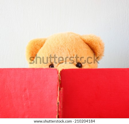 photo of teddy bear reading book. education or playing concept.