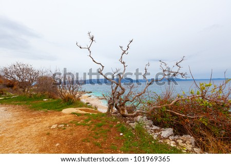 Photo of the Istrian part of the Adriatic coast