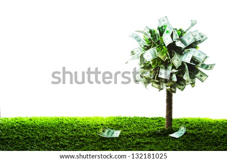photo of tree made of dollars isolated on white