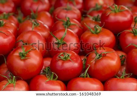 photo of very fresh tomatoes