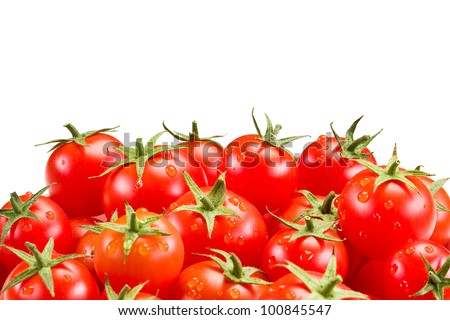 photo of very fresh tomatoes with water drops on white background