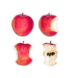Photo of whole juicy ripe fruit red apple, half apple slice, bitten and stub. Set of apples from whole to stub isolated on white background. Different forms of apple. Apple eating process. Vegan food