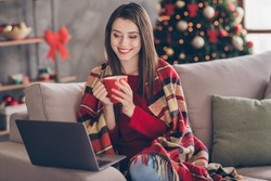 Photo of young lady sit couch netbook hold cup wrapped blanket look screen wear red pullover jeans in decorated x-mas living room home indoors